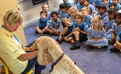 Pet Visit Talk to Foundation