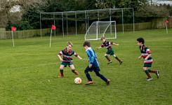 Akeley Wood U8 Football Triangular